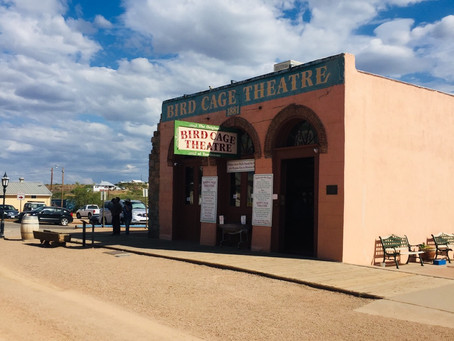 Place: Tombstone & Southern Arizona (with Alpacas!); Book: Looking for Little Egypt