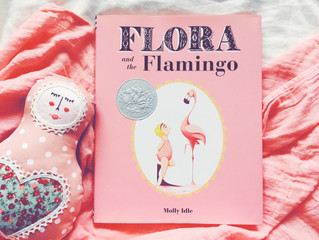 【文字のない絵本】FLORA and the Flamingo by Molly Idle