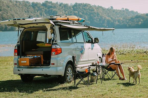 Dream for campervan in New Zealand