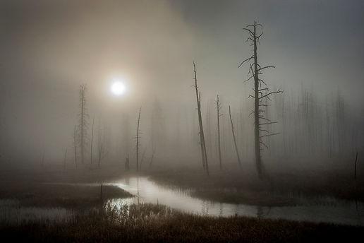 Tangle Creek.jpg