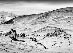 Lava field - Tom Peck.JPG