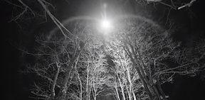 zdjęcie_standard__reflektor_LED.jpg