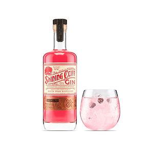 Bakewell Pud Gin.jpg