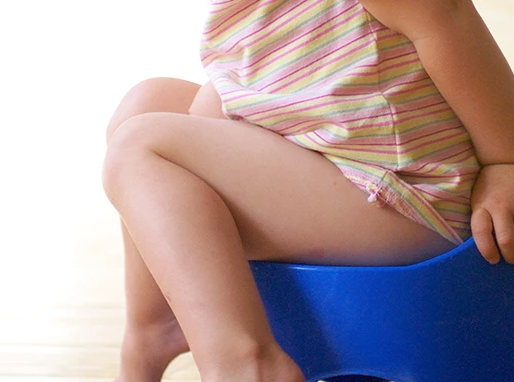 Taking on Toilet Training with your Toddler