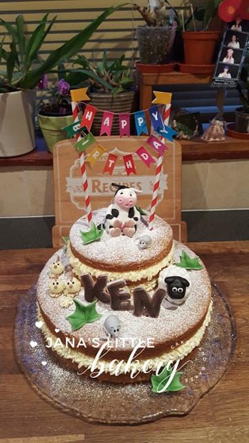 Farm Themed Victoria Cake Birthday Cake