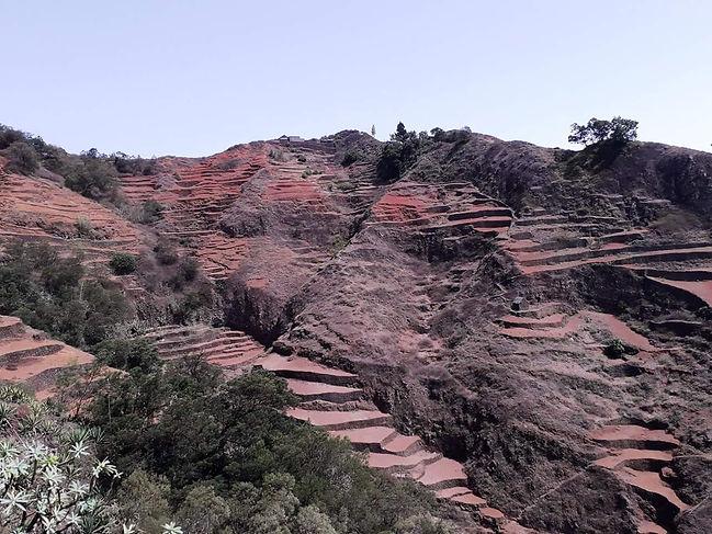 pittoresques terrasses agricoles dans les montagnes sur l'île de santo antao.