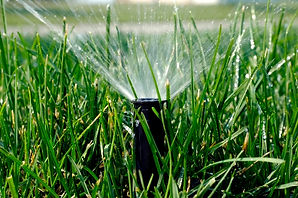 Lupine Lawn Care can assist in monitoring your irrigation system.