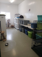 Cat/ Supply Room