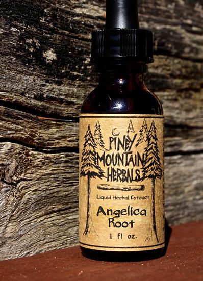 Angelica Root 1 oz