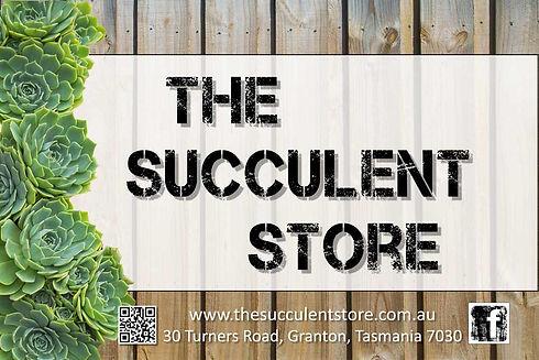 Succulent-Store.jpg