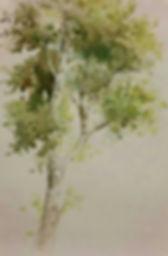 영화 그림5.jpg