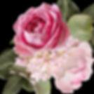 Lady Elsie Lee shop icon.jpg