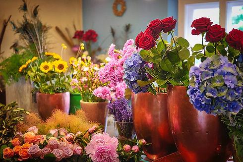 flowers-3496721_1920.jpg