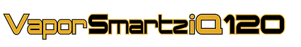 VaporSmartz iQ 120 data sheet