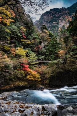 紅葉に流れ落ちる瀧
