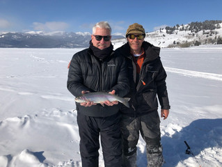 Winter Trout Fishing Diversity