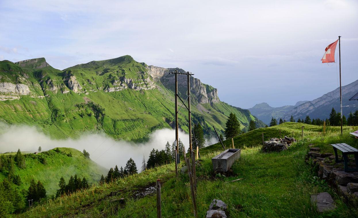 Alp Obersihl, Switzerland, 2017