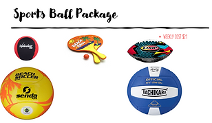 Sports Ball Package