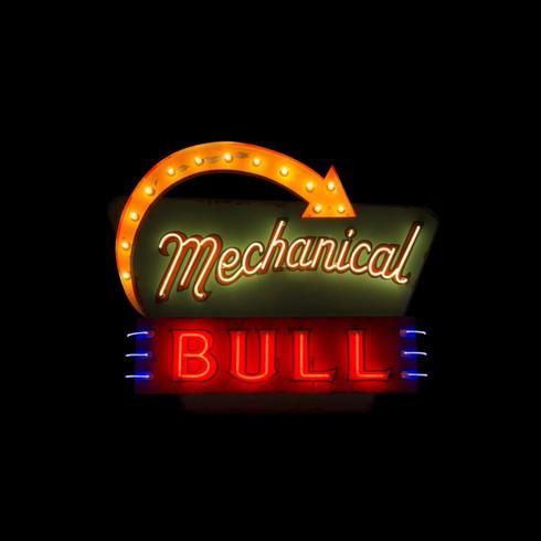 Mechanical Bull