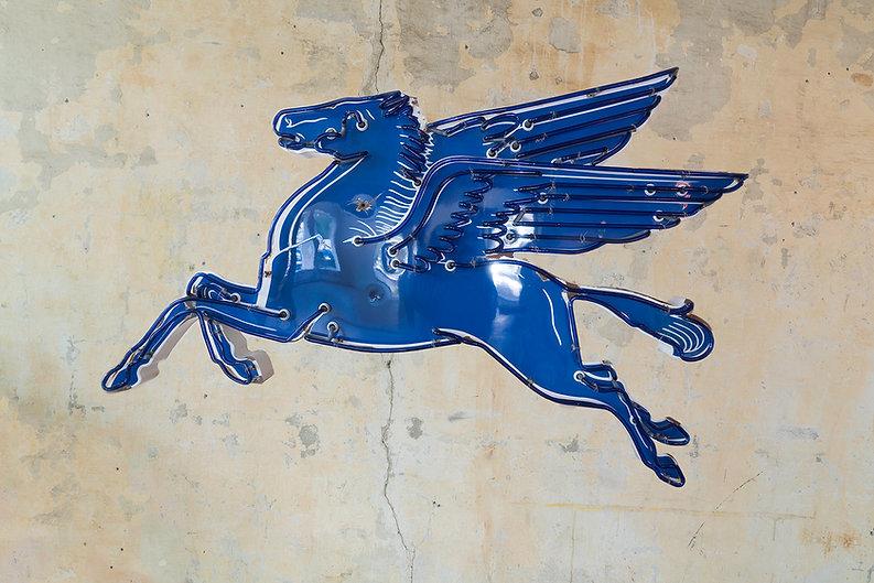 Blue Pegasus_ToddSanders.jpg