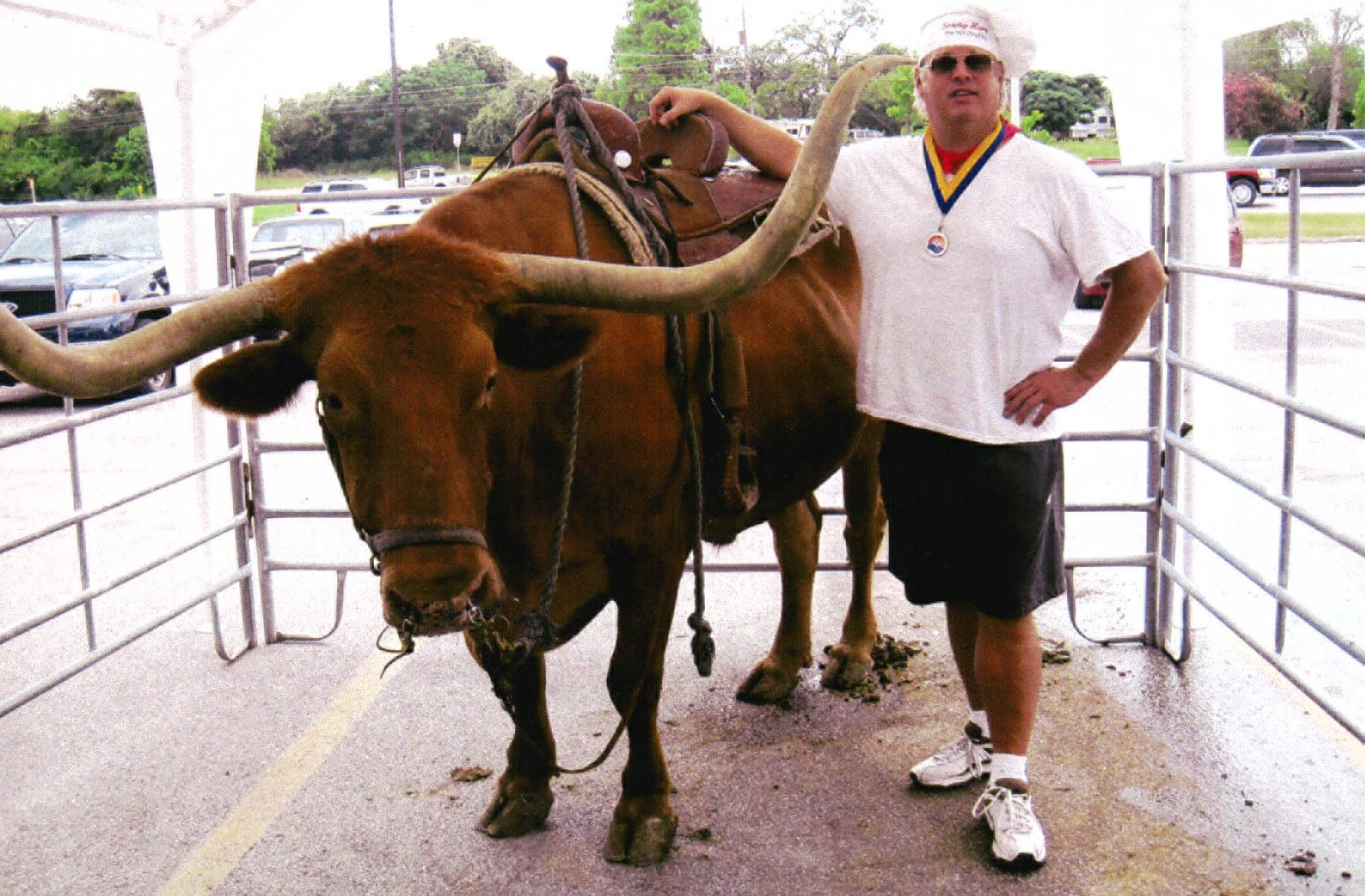 The King and a Longhorn