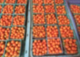 Tomatoes!!