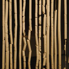 Plaster, sting and bamboo 100cm x 110cm