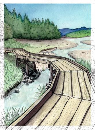 Shoreline Trail copy.jpg