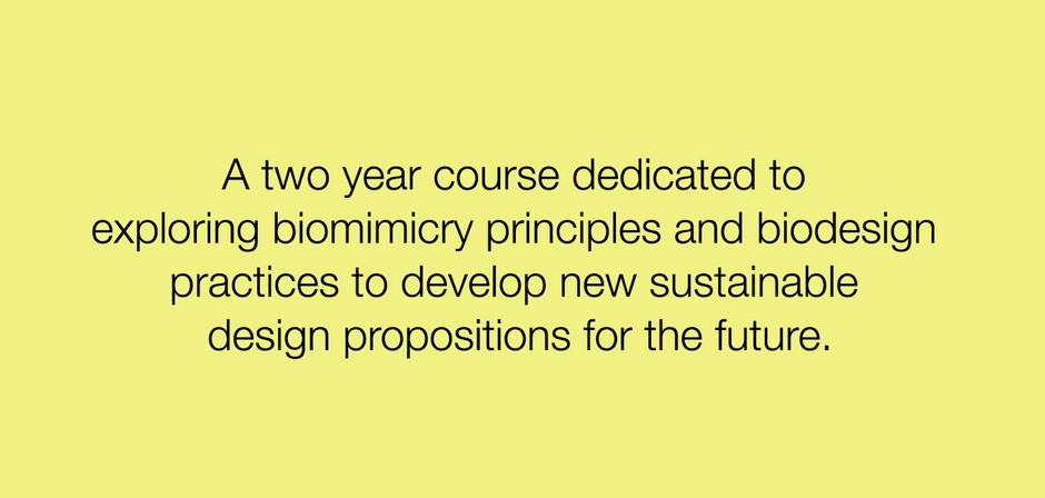 La Central Saint Martins School a annoncé la création d'un nouveau master en biodesign.