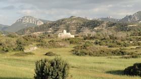 Cypr 2011