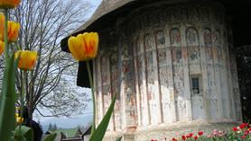 Rumunia 2013