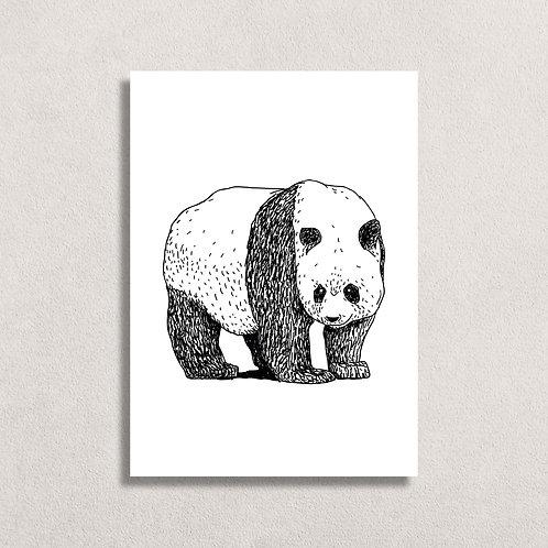 Kaart Panda