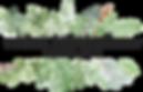 3889-main-logo_5b8e679f81286.png