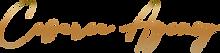 logo_cesarea_agency