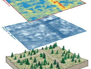 New Study Reveals Hidden Impacts of Petroleum Exploration on Alberta Wetlands