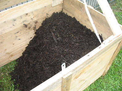 compost tranféré pour maturation.JPG