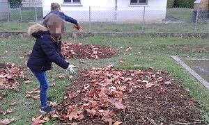 on complète avec des feuilles mortes