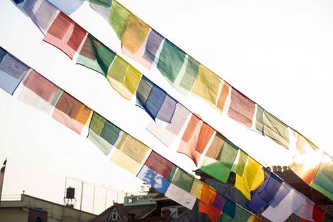 Népal_Site_MLD_008.jpg