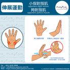69小指對指肌-拇對指肌.jpg