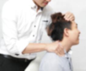 Manual Therapy 手法治療