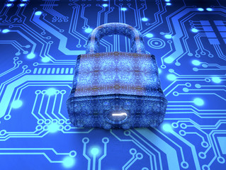 Computer Security and Online Shopping: Protect Your Network