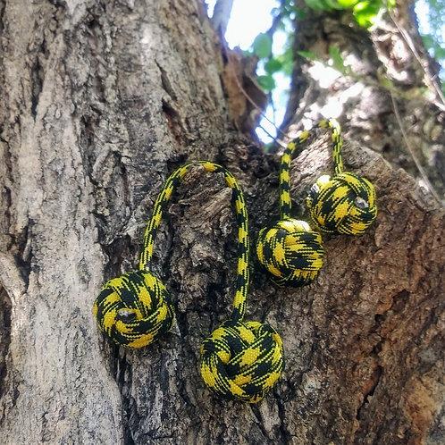 Ball Python Begleri - Black and Yellow