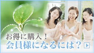 bnr_09_r.jpg