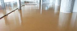 どんな床も綺麗にいたします。