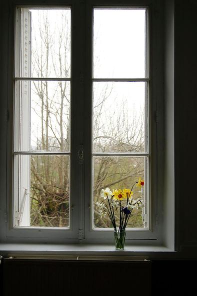 Fenêtre de la vie confinée