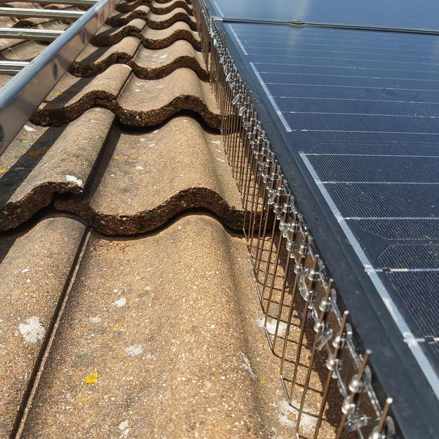 Solar Panel Proofing