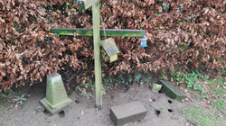 Rat burrows around bird feeder