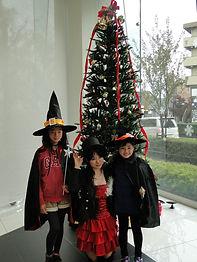 クリスマスマジック|アリス|女性マジシャン