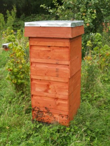 Rose bee hive