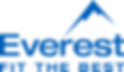 Everest Windows Logo